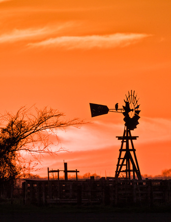 The Old Windmill_MLL0634 c March 29, 2014